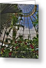 The Dome 002 Buffalo Botanical Gardens Series Greeting Card