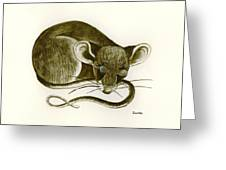 The Dreaming Mouse Greeting Card