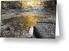 The Dry Creek Bed Greeting Card
