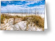 The Dunes Greeting Card by Debra and Dave Vanderlaan