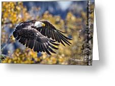 The Eagle Greeting Card