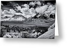 The Eastern Sierra Greeting Card