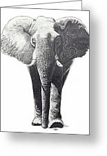 The Elephant Greeting Card