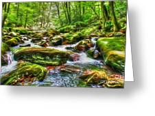 The Emerald Forest 15 Greeting Card