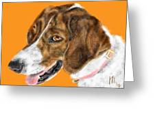 The English Pointer Foxhound Greeting Card