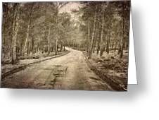The Entrance Of The Great Forest Greeting Card