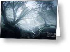 The Ents Are Going To War Greeting Card