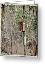 Birdhouse Environment Of Hamilton Marsh  Greeting Card