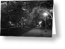 The Evening Foliage Tunnel Greeting Card