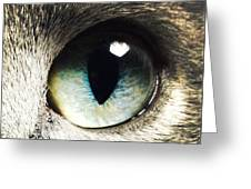 The Eye Of The Russian Blue Greeting Card