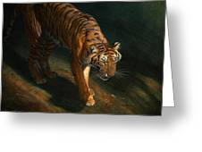 The Eye Of The Tiger Greeting Card