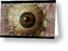The Eyes 12 Greeting Card