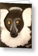 The Face Of A Lemur Greeting Card