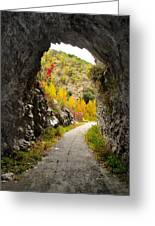 The Fall Cave Greeting Card