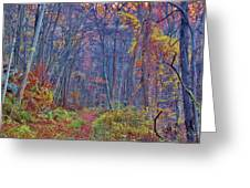 The Fall Trail Greeting Card