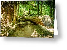 The Fallen Collection 10 Greeting Card