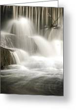 The Falls 2 Greeting Card by Cindy Rubin