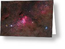 The False Comet Cluster In Scorpius Greeting Card