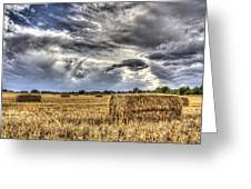 The Farm In The Summer Greeting Card