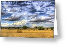 The Farm In The Summertime  Greeting Card
