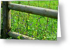 The Fence At The Meadow Greeting Card
