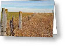 The Fence Row Greeting Card