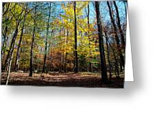 The Final Days Of Autumn Color Greeting Card