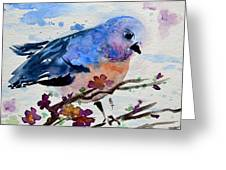 The First Bluebird Greeting Card