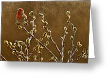 The First Days Of Spring  Greeting Card