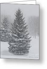 The First Snow Of Christmas Greeting Card