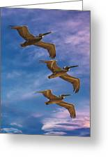 The Flight Of The Pelican Greeting Card