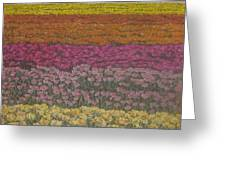 The Flower Field Greeting Card