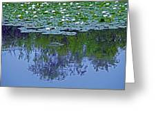 The Forest Beneath The Lilypads Greeting Card