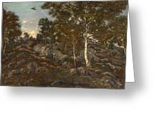 The Forest Of Fontainebleau Greeting Card