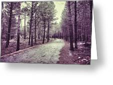 The Forest Road Retro Greeting Card