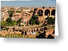 The Forum From The Palatine Greeting Card