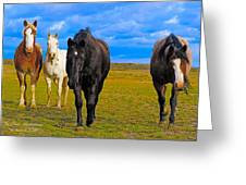 The Four Musketeers Greeting Card