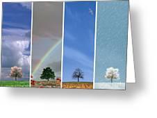 The Four Seasons Greeting Card