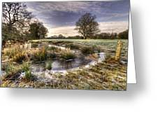 the  Frosty Field  Greeting Card