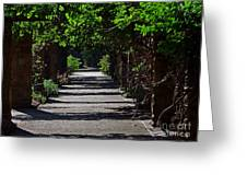 The Garden Pathway 2 Greeting Card