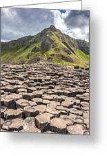 The Giant's Causeway In Northern Ireland Greeting Card
