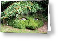 The Giant's Head Heligan Cornwall Greeting Card