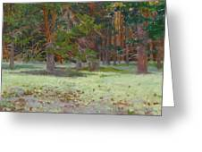 The Glade Covered With A Moss Greeting Card by Victoria Kharchenko