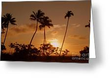 The Glow Of Sunset Greeting Card