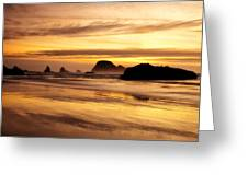 The Golden Coast Greeting Card by Darren  White