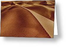 The Golden Hour Anza Borrego Desert Greeting Card