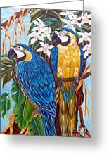 The Golden Macaw Greeting Card