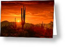 The Golden Southwest Skies  Greeting Card