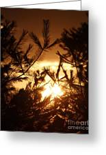The Golden Sunset Greeting Card