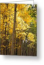 The Golden Tree Greeting Card